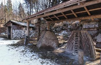 The Limestone Trail