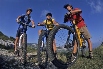 Mountain bike on the Asiago Plateau