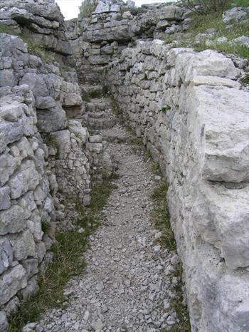 A Mount Zebio trenche