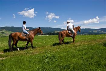 A cavallo sull'Altopiano