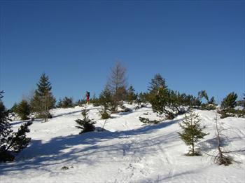 Itinerari per lo sci alpinismo sull'Altopiano di Asiago (foto di Barbara Rodeghiero)